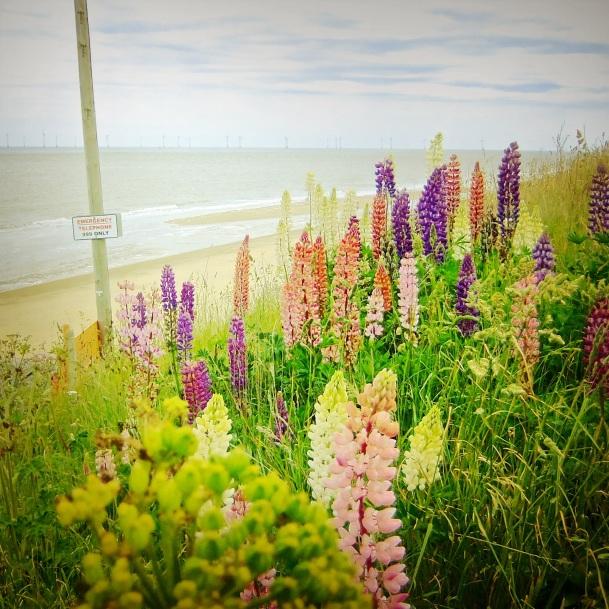 Scratby Beach by Mark Wallis